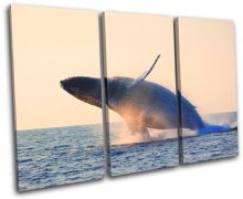 Whale Blue Sunset Seascape - 13-0163(00B)-TR32-LO